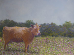 "Cow in Thistlespastel 12""x16"""