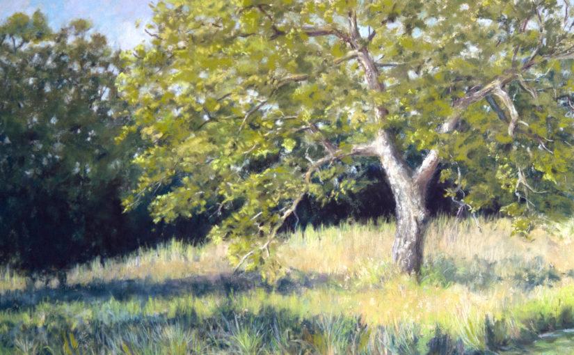 Post Oak Commission